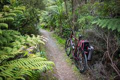 Uphill Singletrack