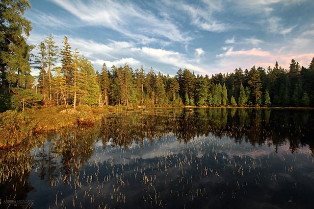 Lac Alphonse - La Mauricie National Park (Québec, Canada)