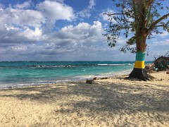 Nirvana Beach 🌊 New Providence Island, Bahamas  #iphone6splus