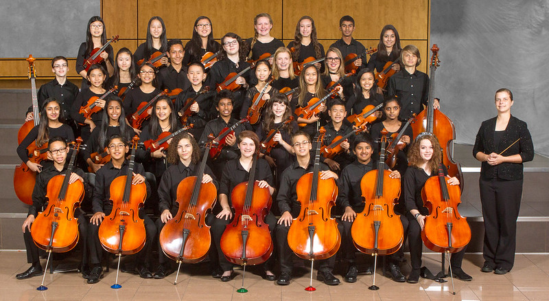 CMS Sinfonia Orchestra 2016-17