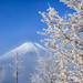 White and Blue by shinichiro*