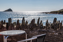 20150730-_5D_3478 Have a seat_.jpg
