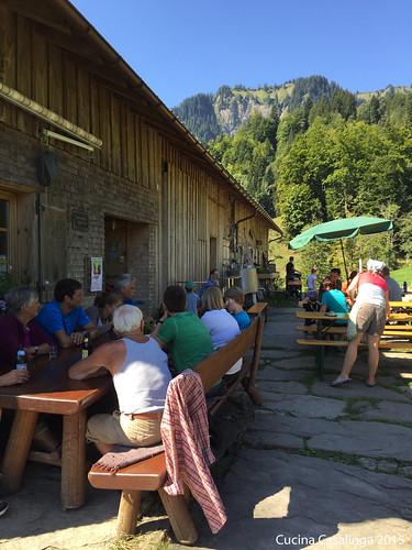 Mellau Alp Buchen Außenbereich
