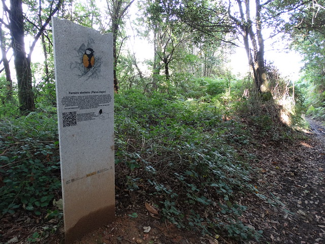 Hito de Piedra en la Ruta Ornitológica del Bosque Animado