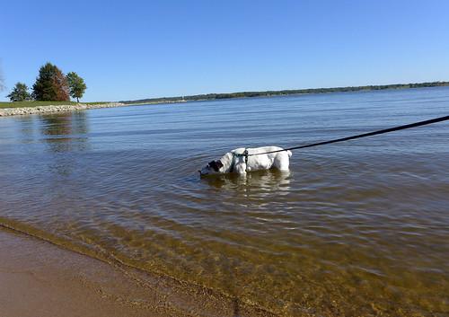 2015-09-30 - Walking at the Lake - 0081 [flickr]