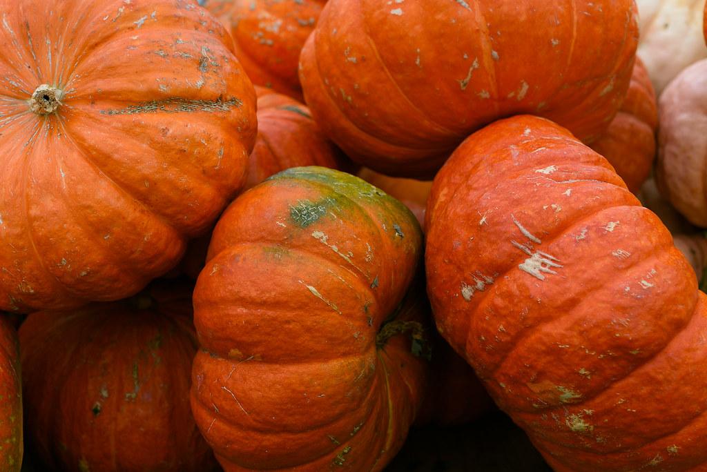 Pumpkin Cornbread Muffins via forkknifeswoon.com @forkknifeswoon