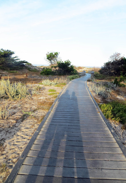 Asilomar in Monterey California