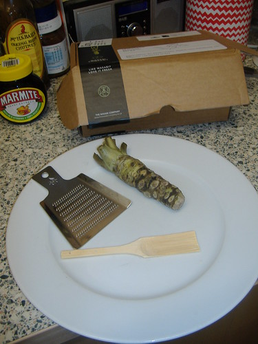 English wasabi, portrait with marmite