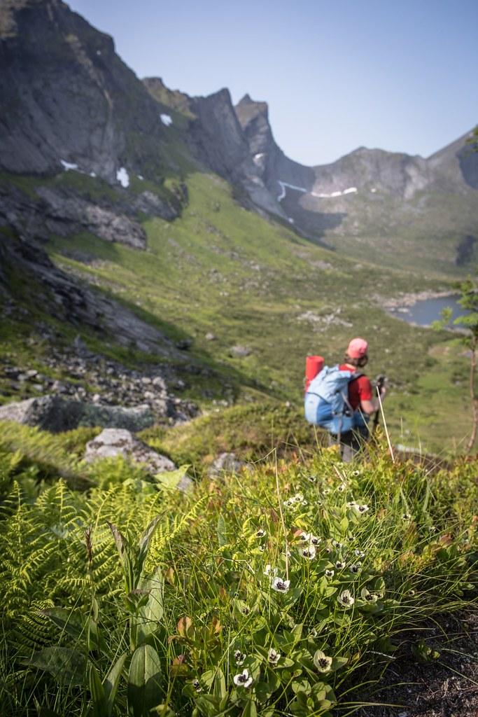 Descending into Fagervatnet. Selfjorden. Lofoten archipelago. Norway. #6monthspregnantinpicture #6kgbackpack