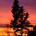 2015-11-15 Autumn Sunset by tsegat01