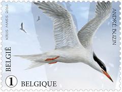 Zwin pour timbres seÌpareÌs