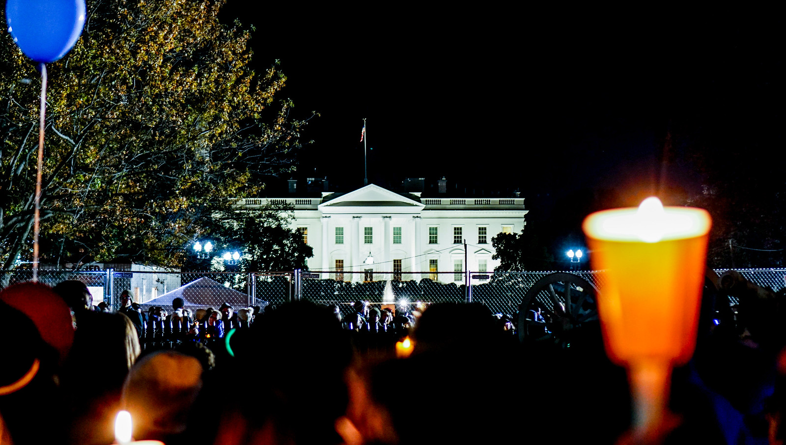 2016.11.12 Anti-Trump Protest Washington, DC USA 08694