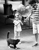 The cat and the string by Abby Leigh photos
