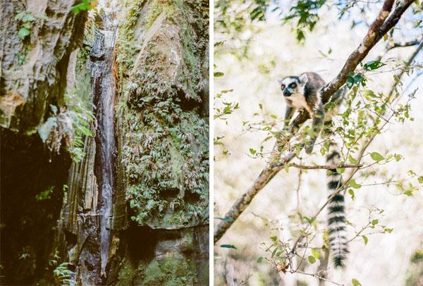 RYALE_Madagascar_Blog2_046