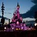 Disney dawn