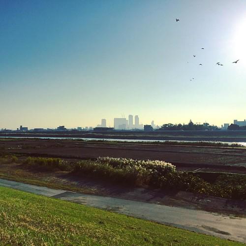 #20151018 #名古屋 散歩