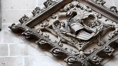 Álbum fotográfico 'Visita por la Sociedad Medieval BCN' - lazzum