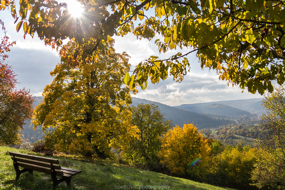 Autumn Bench with a View I - October 2015 III
