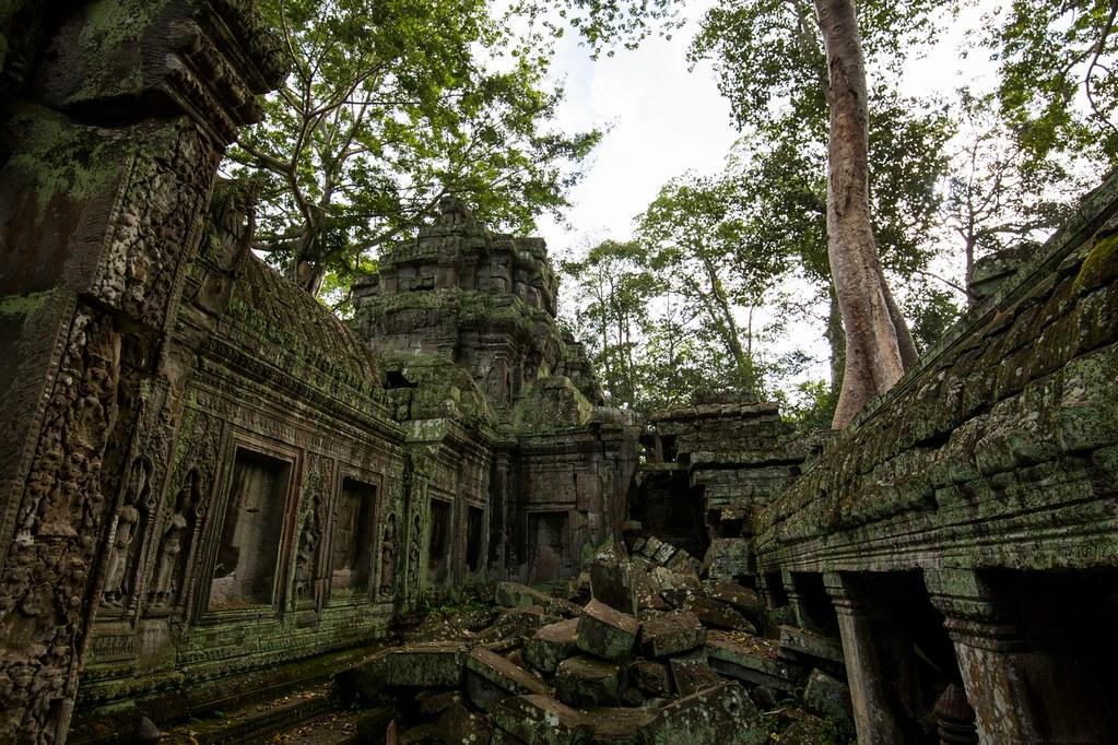 Ta Prohm Angkor-2847