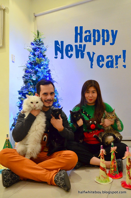 family portrait with cats 01