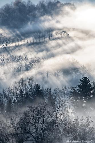 Non neve, ma nebbia! (explore 25/12/15)