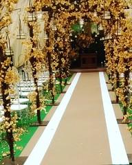 Passadeira dos noivos! #casamento #decor #decoracao #carpet #festa