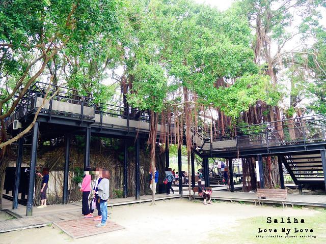 台南一日遊景點推薦安平樹屋安平老街 (40)