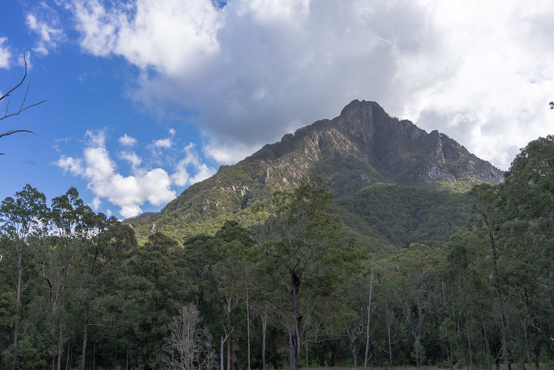 Mount Barney from Yellow Pinch