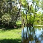 Seasonal Wetlands: Summer vs Spring