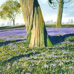 To Reach the Top of Bluebell Bank. Oil on board. 52 X 33cm. ALAN MORLEY.