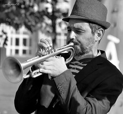 trumpet, music, trumpeter, monochrome photography, monochrome, brass instrument, black-and-white, wind instrument,