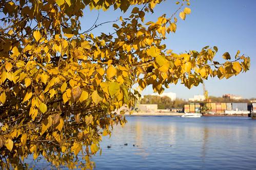 Переменная облачность без осадков и до 17 градусов тепла ожидается 15 октября