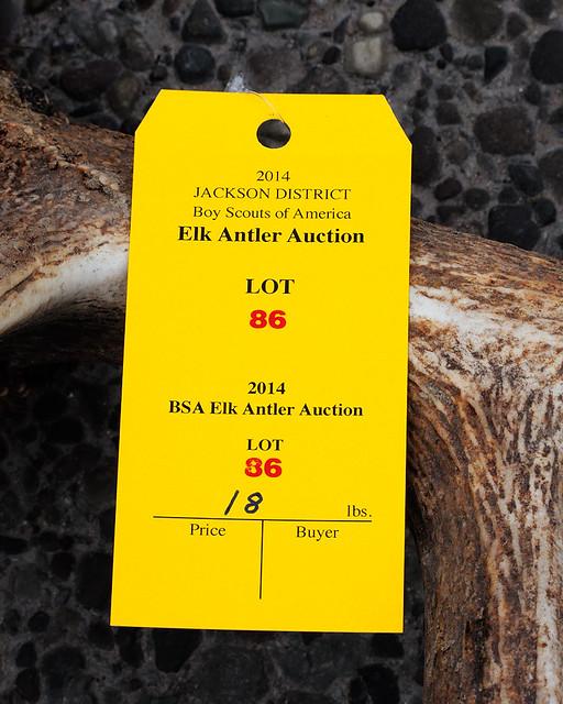 DSCN1495 Elkfest