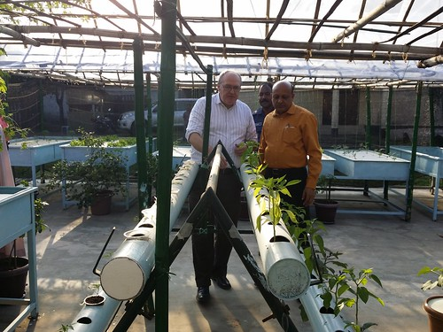 Hhydrophonic agriculture lab at Bangaldesh Agricultural Research Institute (BARI)