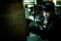Boxer (:copyright: Jimmy Cheng)
