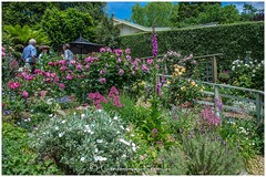 Open Garden in Monbulk