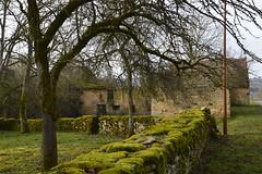 Écharnant - Photo of Bessey-la-Cour