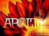 apollo11fire3 by • BruinsFan •