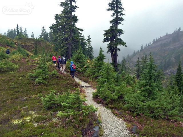 Mount Baker Hiking