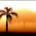 misty sunrise.. by Foto.Bloke