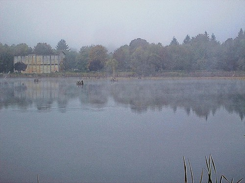 Abandoned mill building in the fog, Lake Vernonia