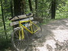 yellow bike in forest