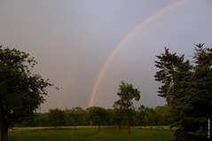 primary and secondary rainbow over forest