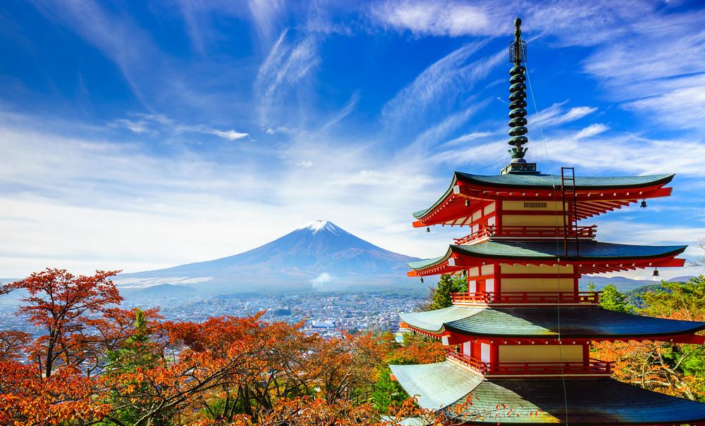 Tours de 1 día desde Tokio