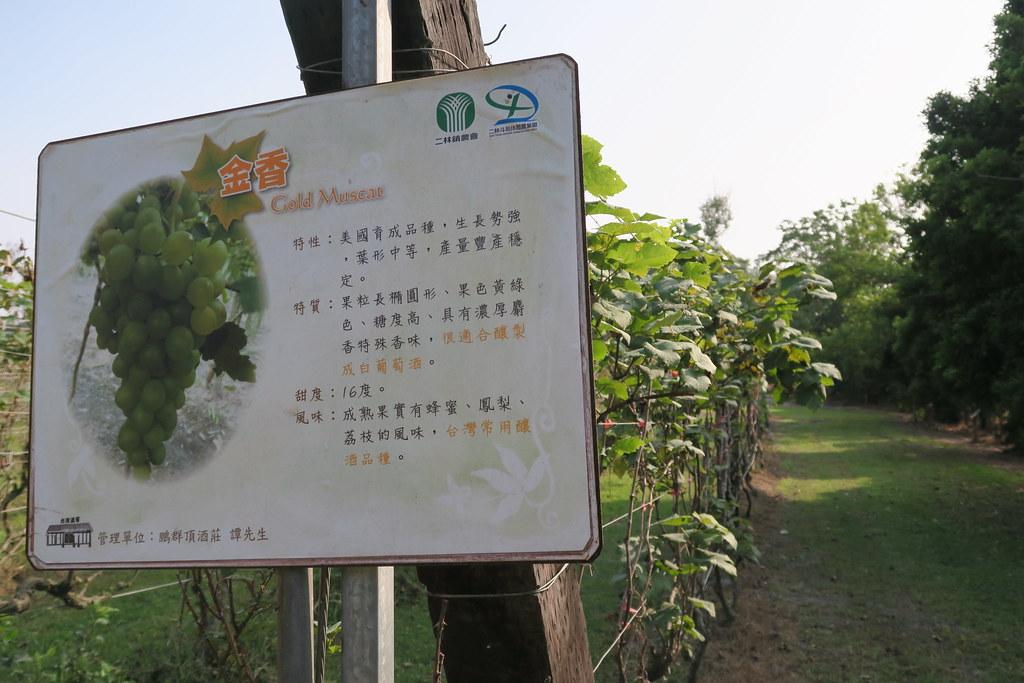 彰化縣二林鎮台灣酒窖 (41)