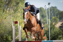 Autumn Show Jumping CCVM