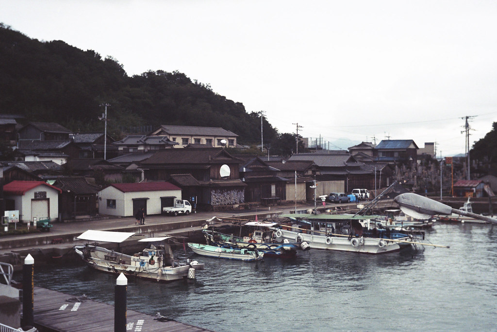 they live in Ogishima