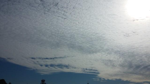 임진강생명평화축제(물좀주소)-구름바다