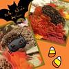 It's fall, y'all! #msnixieknox #trixynixy #hoglife #hoghabits #hoglove #hedgies #hedgiesofinstagram #allhedgies