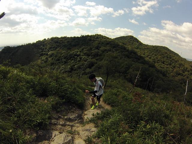 京見山 (24)